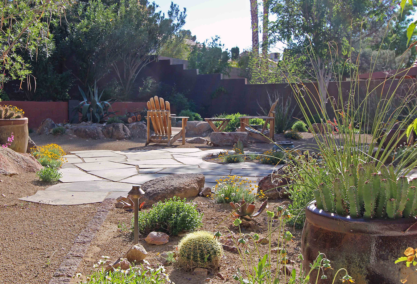 Creating Your Desert Oasis Finding Plants That Dig