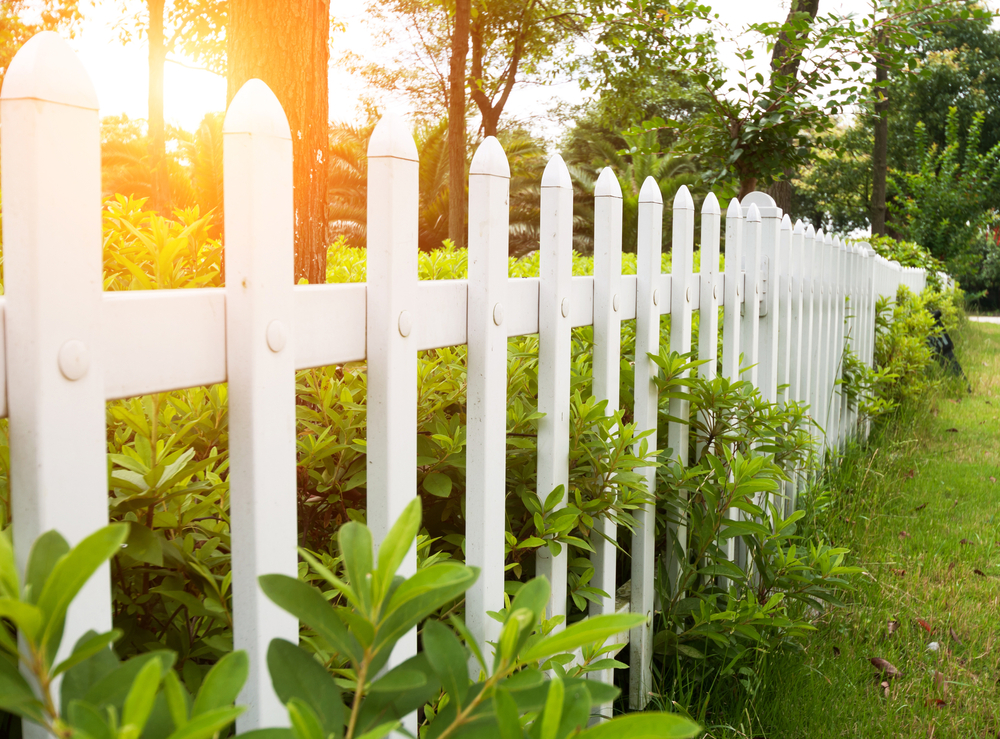 White picket fence with sun shining through