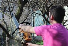 man sawing tree limb